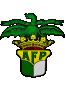 AF Porto
